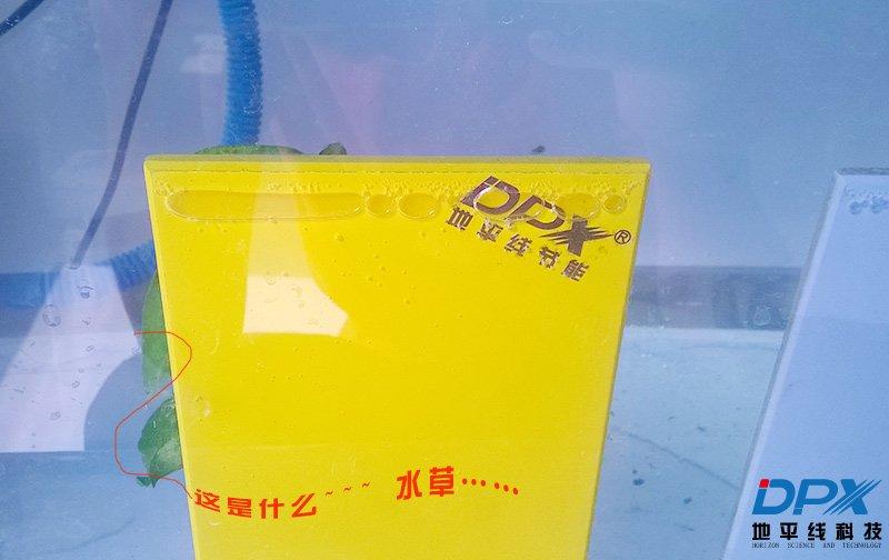 DPX索洁板耐水实验